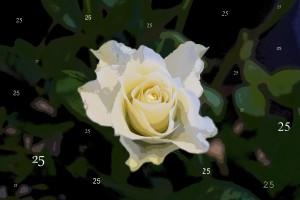 Rose bearbeitet Comic25